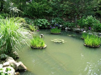 広島旅行記 その3 縮景園
