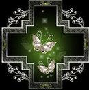 Butterfly_scho